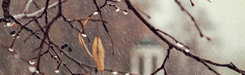 Outono/Inverno